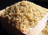 魔法の食べ物  「玄米」 1